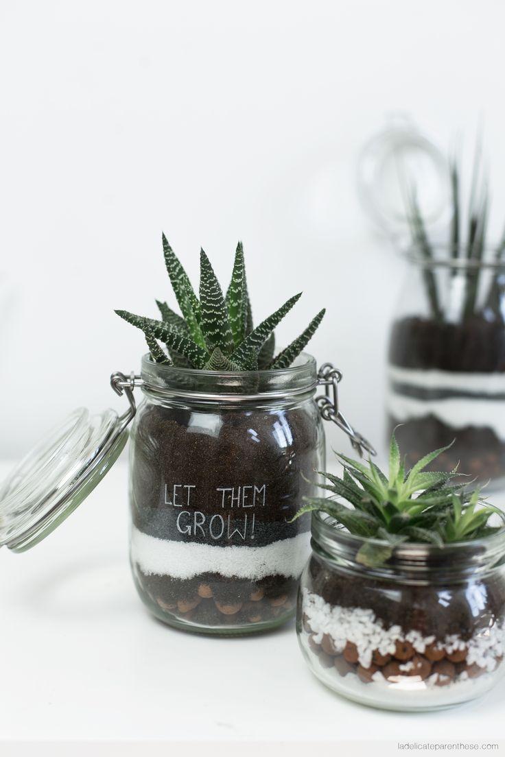 les 25 meilleures id es de la cat gorie terrarium bocaux sur pinterest pot ma on plantes. Black Bedroom Furniture Sets. Home Design Ideas