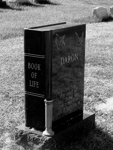 The Book of Life grave stone  Some people have a few chapters to their book of life, and others have many chapters.  Each life is filled with happiness, heartbreak and for some much pain.  DB