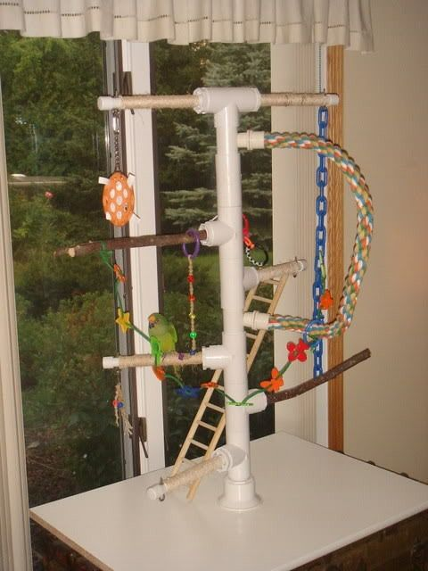 diy macaw play stands | PVC Playgyms | Cages for Birds