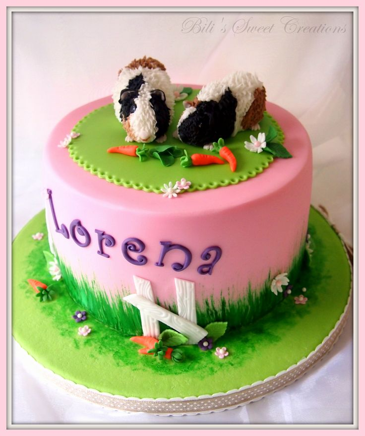 Birthday cake guinea pig