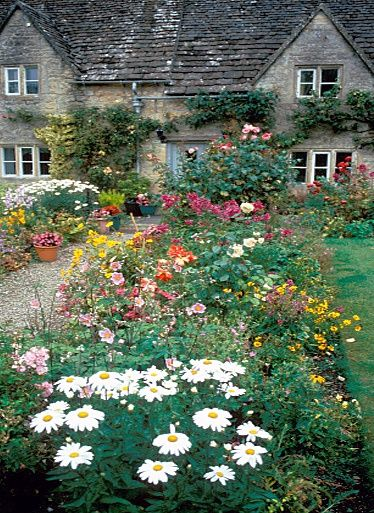 Cottage house garden, on the walkway between the house and the barn