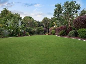 Photo of a low maintenance garden design from a real Australian home - Gardens photo 124634