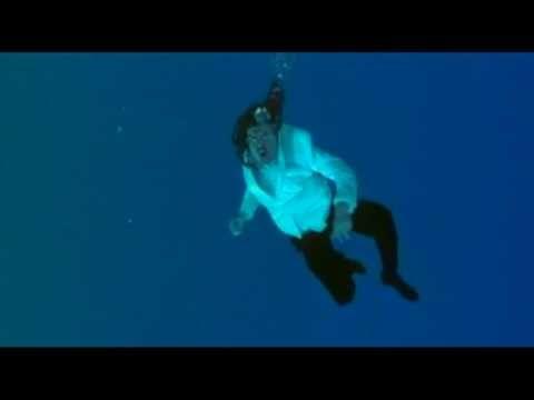 "▶ ""Weird Al"" Yankovic - One More Minute - YouTube.    Dream: Weird Al Yankovic swimming in an aquarium with cats."