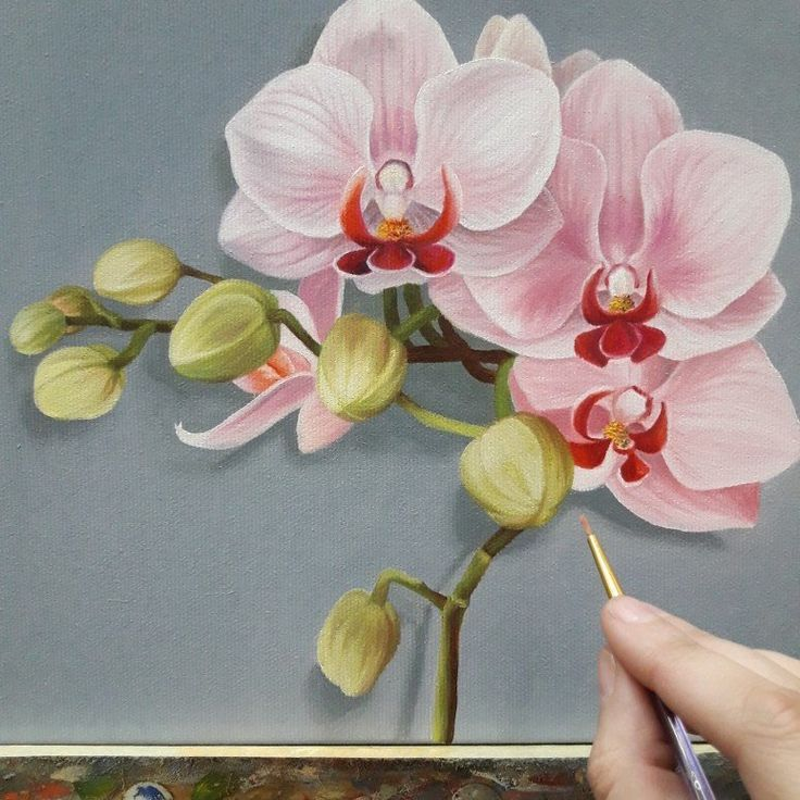 Orchid Delicate Pink Flower Oil Painting On Canvas Wall Decor
