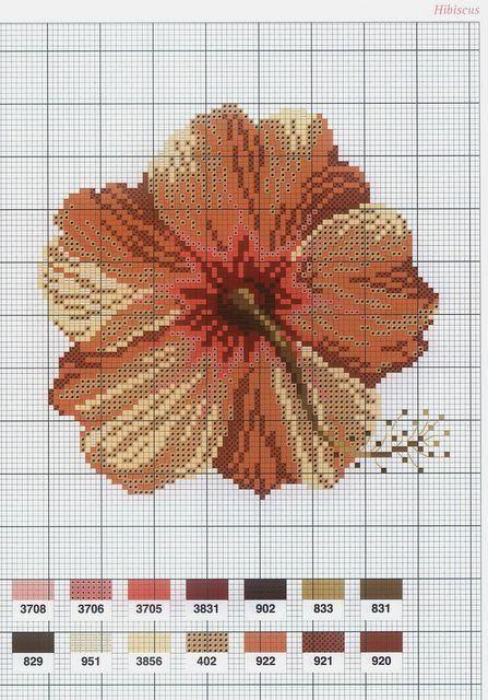 [flor-ponto-cruz-grafico-13%255B2%255D.jpg]