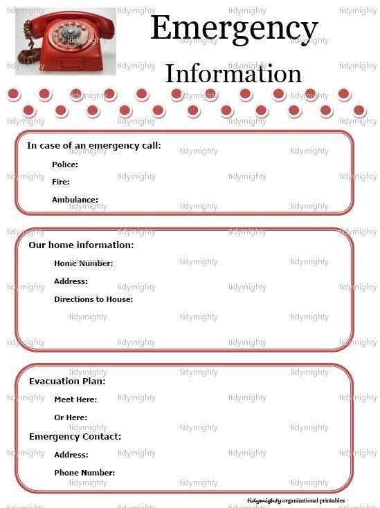 Babysitter Information Sheets template Pinterest Printables
