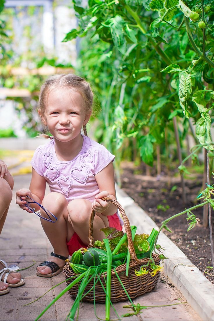 Teaching kids about gardening takes time. Begin with this FREE garden planner for kids to get kids to start imagining their own garden.