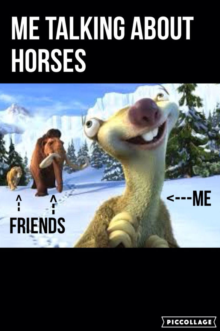 Me talking about horses