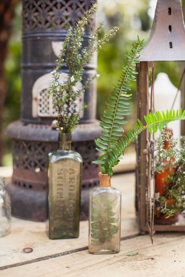 Vintage wares with native New Zealand ferns. Styled by Honeysucklerose and photographed at Hush by Courtney Horwood