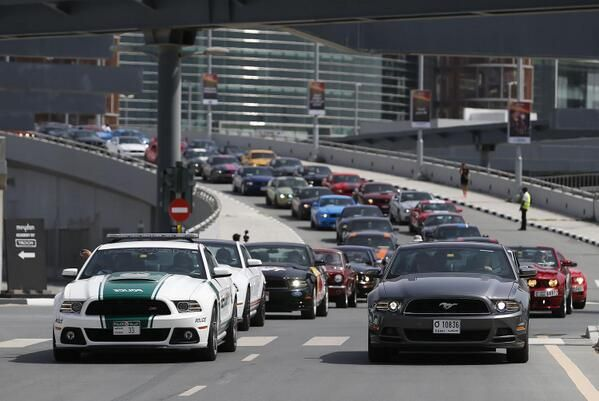 What a sight! @FordMiddleEast celebrates 50 years of the legendary #Mustang in massive event!