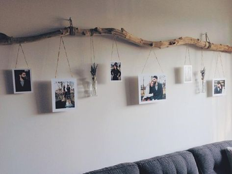 Photo of Branch with photos and pots of flowers hanging out.