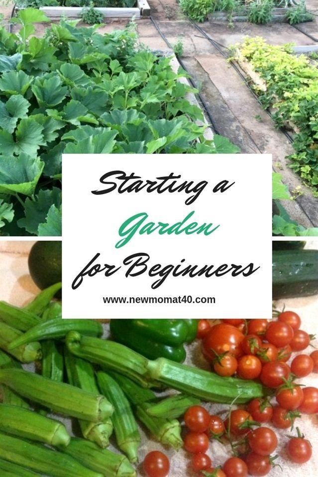 Organic Gardening Near Me How To Apply Espoma Organic Garden