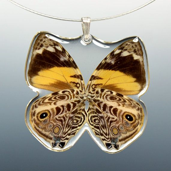 Real Whole Butterfly Pendant Necklace by PetalConnection on Etsy