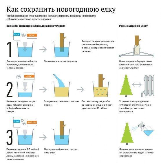 Вы уже украсили свой дом ёлочкой? Если вам только еще это предстоит, то http://lifezon.ru/ даст вам пару полезных советов как ее сохранить красивой еще дольше!