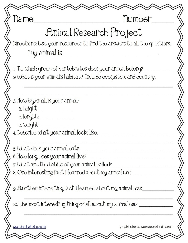Research projects for students