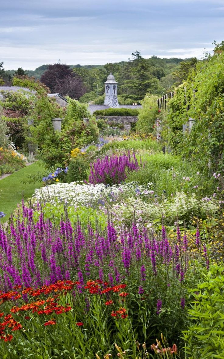 The best images about britain in bloom on pinterest gardens