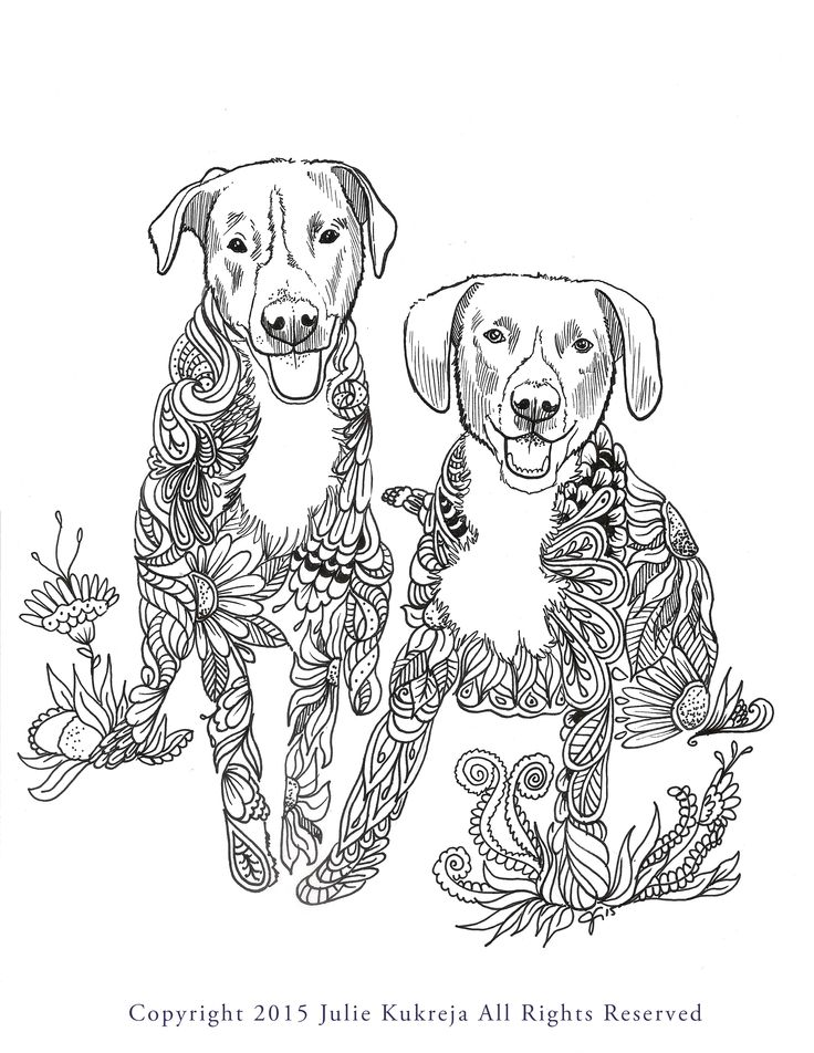 Custom Pet Portraits In The Style Of Adult Coloring Book Pages Get Your Portrait