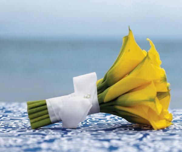 nautical collection at palace resorts destinationwedding weddingideas