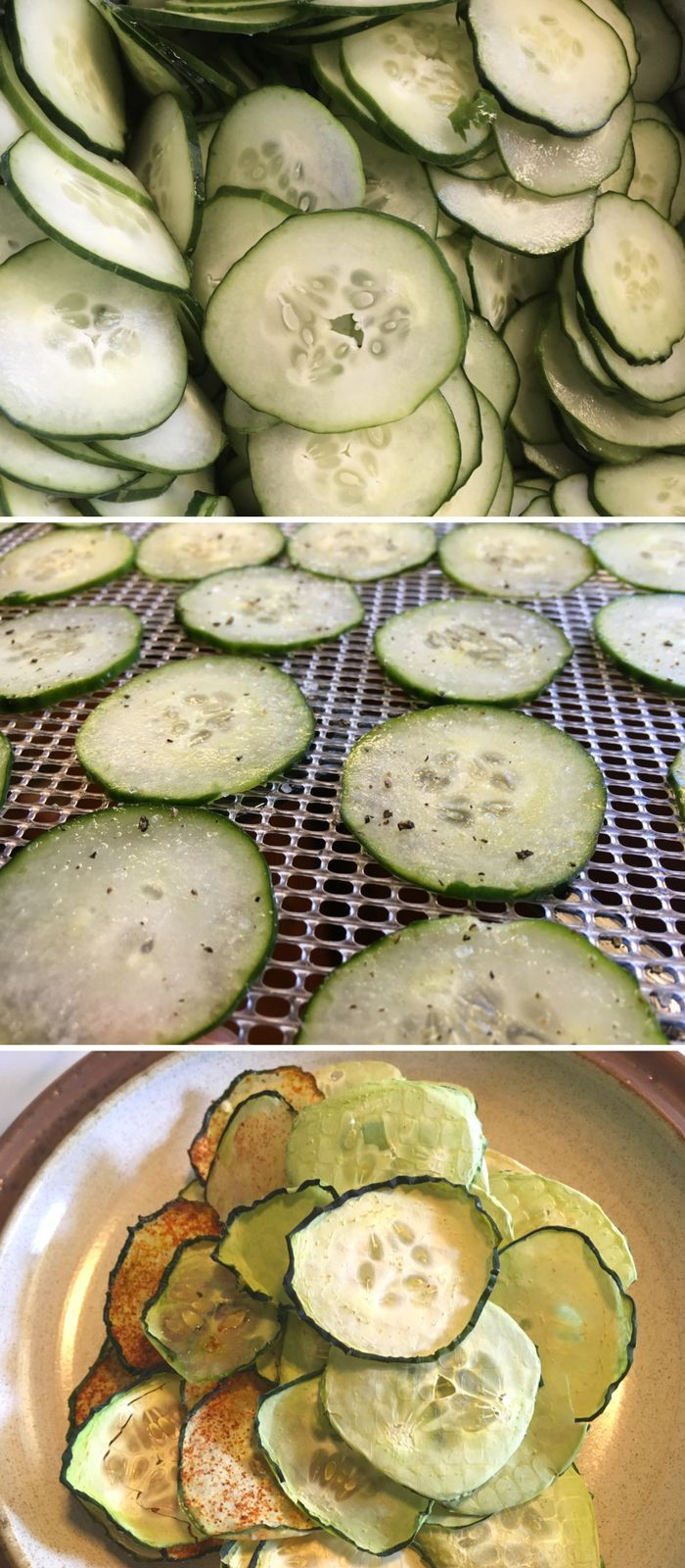 Preserve cucumbers by dehydrating them! Make cucumber chips with 5 different flavor options. Food Preservation | Dehydrating | Preserve Cucumbers