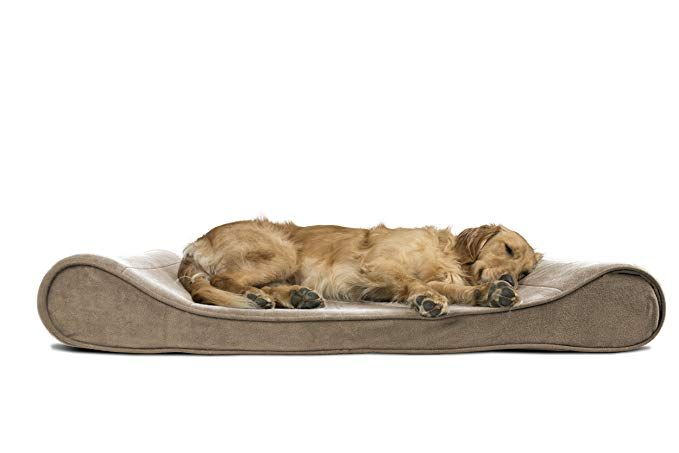 Furhaven Pet Dog Bed Orthopedic Microvelvet Luxe Lounger Pet Bed For Dogs Cats Clay Jumbo Dog Pet Beds Orthopedic Dog Bed Dog Bed