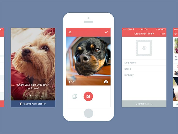 Capture [Dog App]