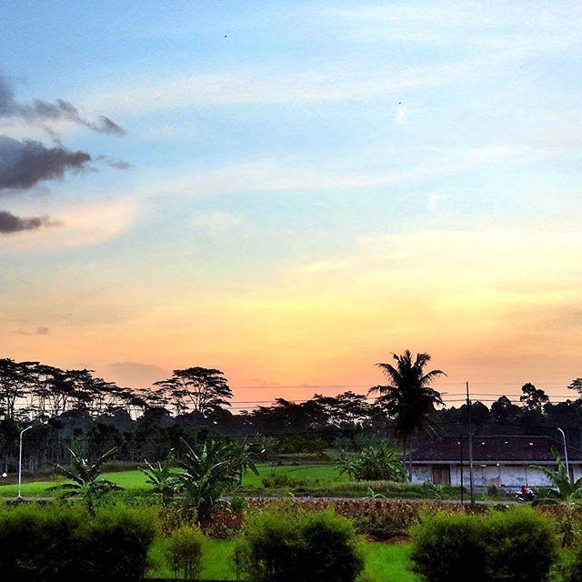 Sunset di Nongkosawit (lagi)  #beautiful #nature #sunset #love #summer #clouds #sky #sun #night #sunrise #beauty #tree #mothernature #instagood #cloudporn #blue #skylovers #weather #pink #landscape #instalike #day #twilight #skyporn #life #pretty #photo #dusk #flowers #horizon