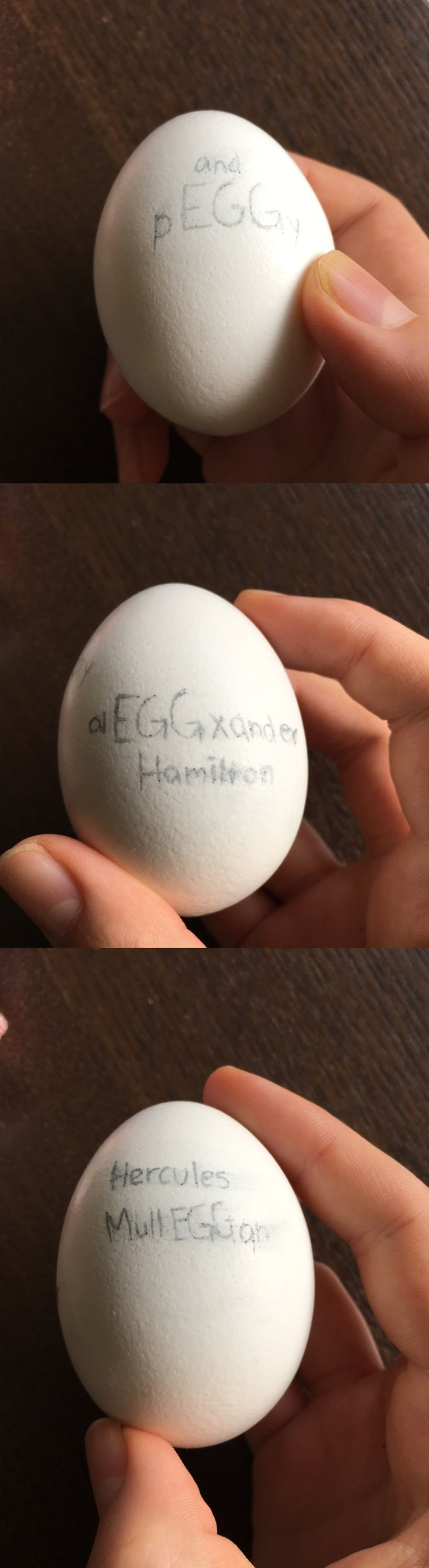 Sorry it's kind of hard to read, I didn't want to use Sharpie so I used a regular pen. Here we can see pEGGy, alEGGxander Hamilton, and Hercules MullEGGan. Happy easter