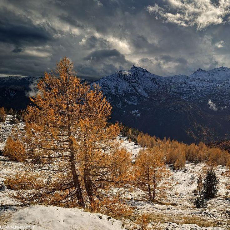 Autumn Power!  #montagna #mountain #natura #Italia #relax #mountains #trekking #Alpi #alps #Alpes #outdoor #mountainlife #landscape #photography #photo #nature #travel #art #photooftheday #image #clouds #LandscapePhotography #sky #beinspired #mountainlifestyle