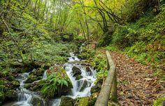 Ruta del agua en Taramundi