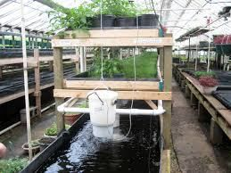 Whether you are looking to feed and sustain YOUR FAMILY or an ENTIRE COMMUNITY… We have a SOLUTION FOR YOU!!  Utilize Aquaponic Systems To Grow Your Own Food Sources – Implement Our Renewable Energy Options and Become Completely Self-Sustaining… We Can Build a System For YOU…  AQUAPONICS Our Partners havein-depth expertise in developing …