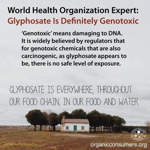 HEALTH ALERT! Three months ago, the World Health Organization's International…