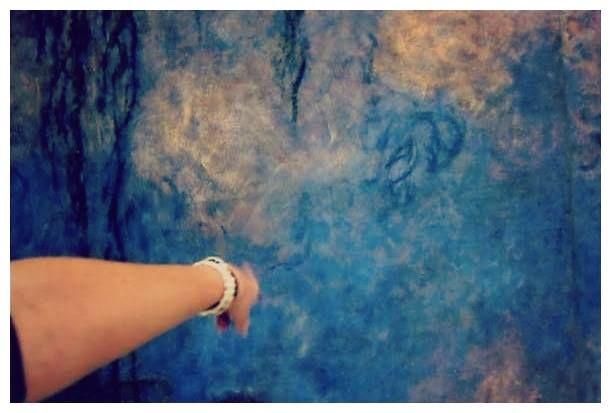 """Elisa Enrietto – facebook: #tikonservo """"[...] due sale dell'Orangerie di Parigi dove le Nymphéas di Monet furono installate, nel gennaio del 1927, e dove, ancora oggi, sarebbe dato al pubblico di vederle, se solo vederle non fosse un termine totalmente inadeguato al gesto, impossibile, di guardarle. (Diapositiva n. 421) - 'City' Alessandro Baricco"""