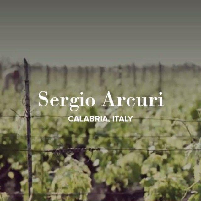 Vino Nostrum: Winery video, Instagram
