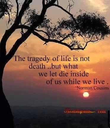 """""""The tragedy of life is not death but what we let die inside of us while we live."""" Health, Happiness & Longevity-available in digital & print editions."""