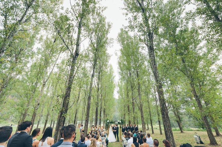 Photo from Alex Marks Photography of our wedding ceremony at Stonehurst Cedar Creek in the Hunter Valley