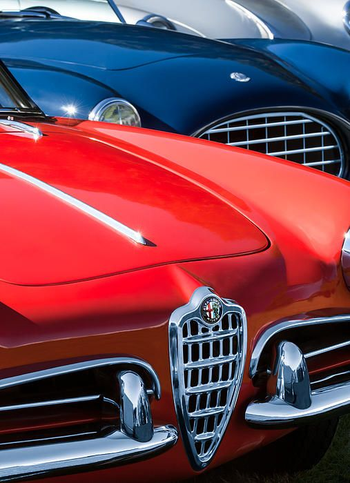 17 best images about alfa romeo cars on pinterest car. Black Bedroom Furniture Sets. Home Design Ideas
