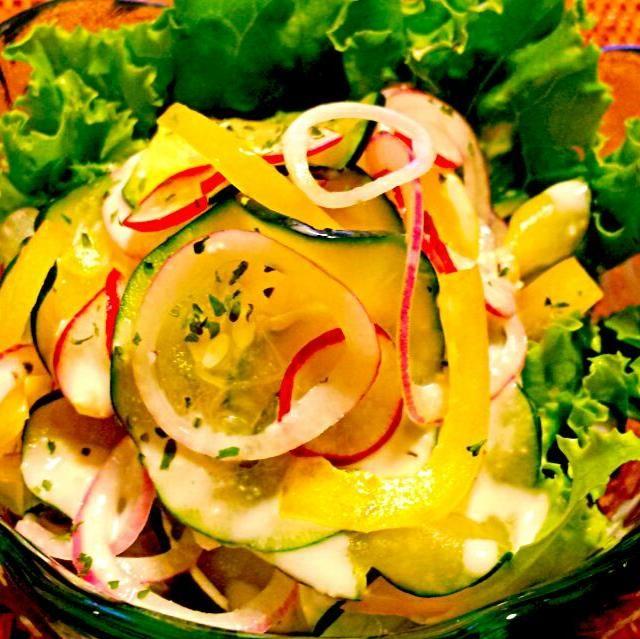 塩揉みしたズッキーニとラディッシュを、薄切りのパプリカと紫玉葱とサラダにしました。 - 49件のもぐもぐ - 本日のおつまみ☆ズッキーニのサラダ by kana000suzuki