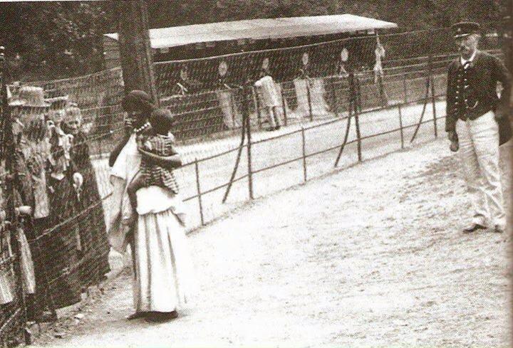 """Belçika, İspanya,Almanya,İsveç,İtalya, ABD'de,etrafı dikenli tellerle çevrili 'insan hayvanat bahçeleri"""" 1960"""