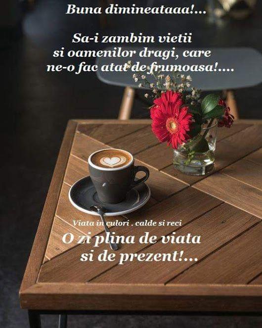 Gabriela Stan - Google+