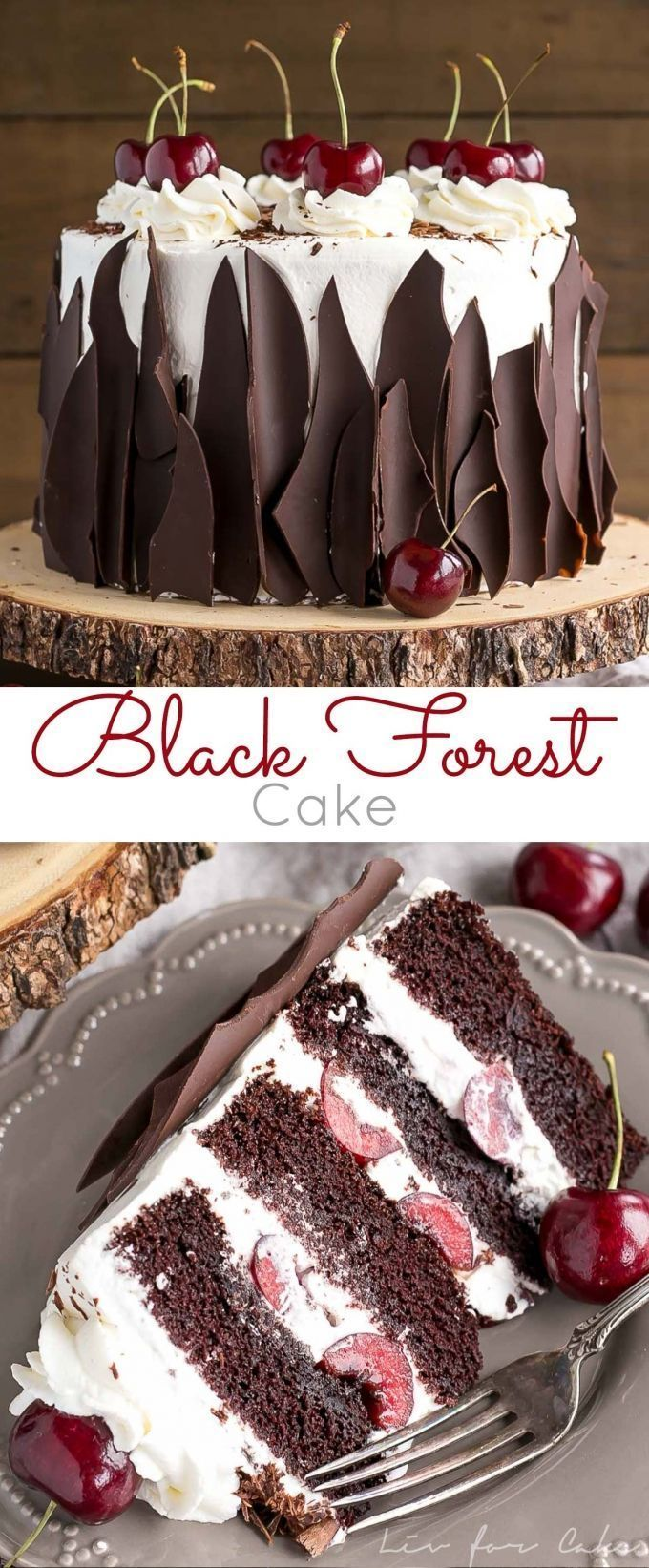 This Black Forest Cake Combines Rich Chocolate Layers With Fresh Cherries Cherry Liqueur And A Simple Whipped Cream Frosting