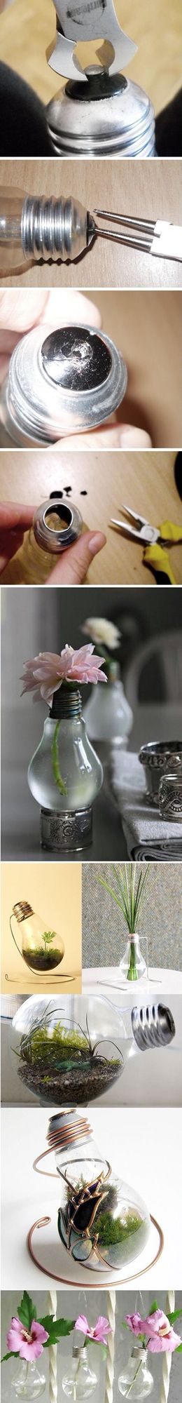 DIY, recycled light bulbs! What a great idea!