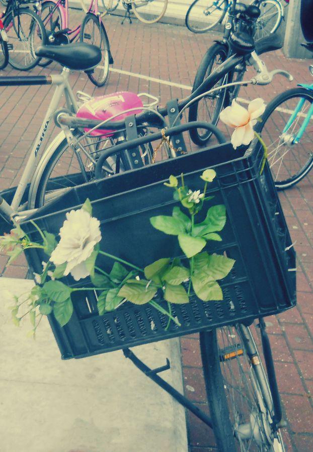 Amsterdam: Bike & Flowers by Fioralba Duma, via 500px