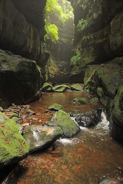 Green Canyon, Blue Mountains, Australia.