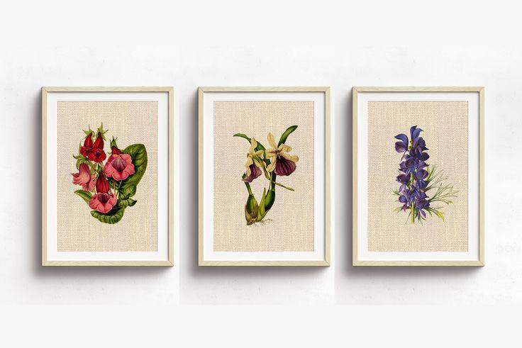 floral poster printable, flower poster set of 3, flower art print