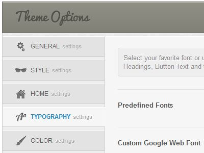 Theme Options for a WordPress