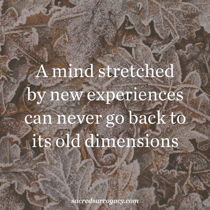 A mind stretched by new experiences can never go back to its old dimensions. surrogacy. surrogate. canada. infertility. egg donor. egg donation. motherhood. single mom. gay dads. lgbt families. quote. quote of the day. meditation. yoga. healthy snacks. diy home decor.