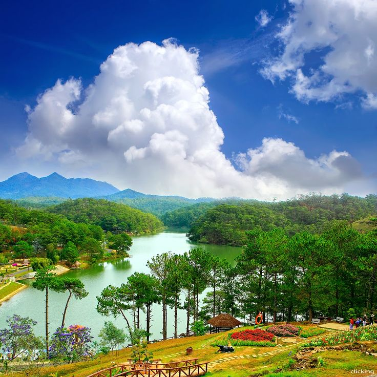 Valley of Love, Dalat