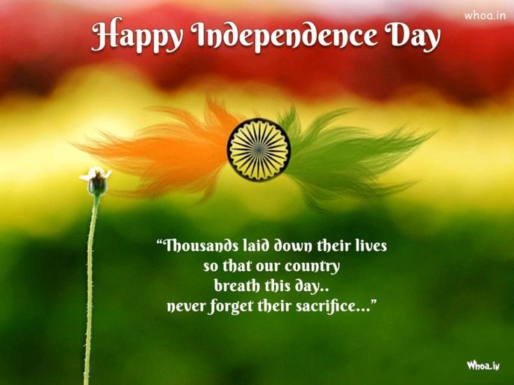 INDEPENDENCE DAY 15 August Azadi Diwas Quotes Msg Sms wishes sayings 2015