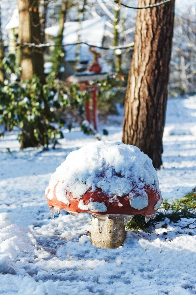 Ook in de Winter Efteling zingen de paddenstoelen in het Sprookjesbos