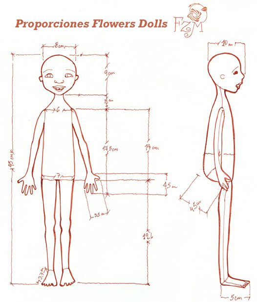 Scale a doll, drawing